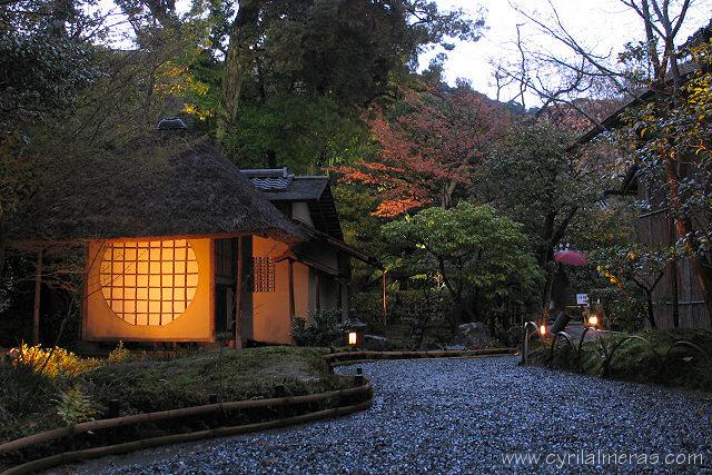 Photos du japon de nuit tokyo kyoto for Jardin kyoto