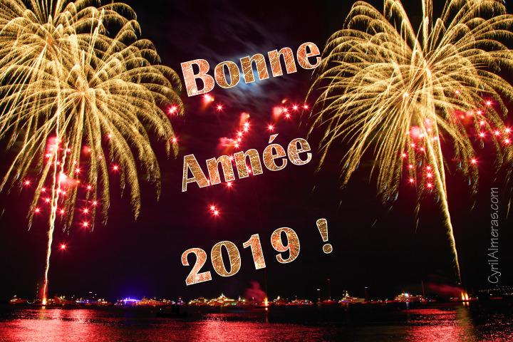 Image Bonne Année 2019